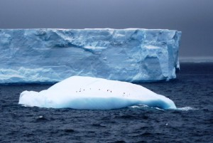 антарктика13