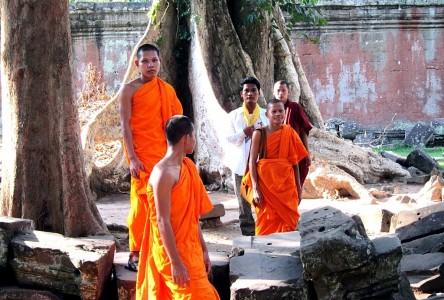 Cambodia Ta Prohm 24