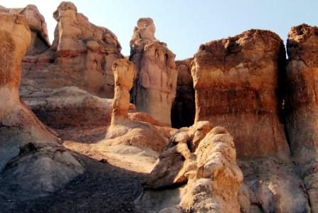 Saudi Arabia Al-Hasa national park 11