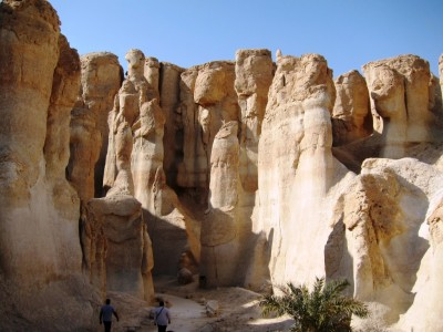 Saudi Arabia, Al-Hasa national park 12