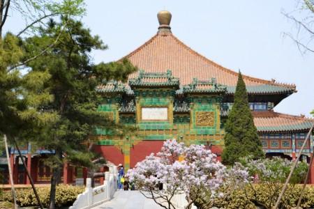 china52