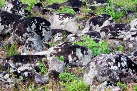 Costa Rica, Lava rocks