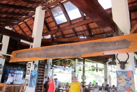 Costa Rica, Manuel Antonio, anaconda skin 1
