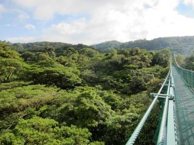 Costa Rica Monteverde, Selvatura Park, Hanging bridges 22